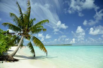Чартерных рейсов на Мальдивы на Новый год будет больше