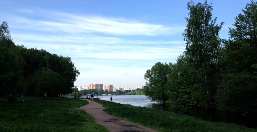 Тимирязевский парк в Москве