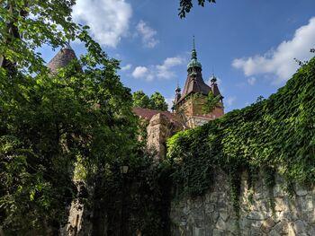 Замок Вайдахуняд, июнь
