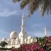 Великая мечеть им.ш. Заеда.