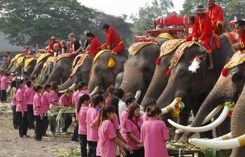 В Таиланде пройдёт знаменитый Фестиваль слонов