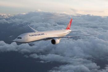 Полицейские в штатском будут сопровождать рейсы из Турции