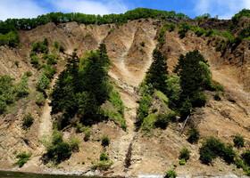 Склоны сопок в районе минеральных источников