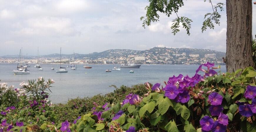 Остров Сент-Маргерит<br/>Île Sainte-Marguerite