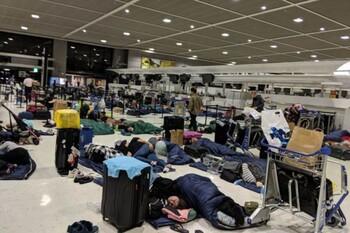 Российские пассажиры авиакомпани JAL застряли в аэропорту Токио после тайфуна