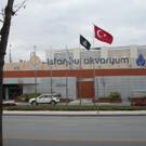 Аквариум Стамбула «Florya Istanbul»