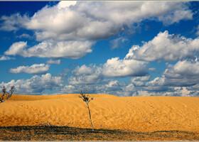 """Пески Элсэн Тасархай. Означает — """"порванные части песка"""". Представьте себе — ярко-зеленая и живая степь, плавно переходящая в горный массив Хөгнө Хан, и вдруг — огромные барханы. Откуда? Как? Кажется, горы песка сюда попросту завезли — настолько все контрастно выглядит. Впрочем, завозить пришлось бы долго, ведь в ширину этот песчаный массив около тридцати километров, а в длину - около 300."""