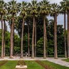 Национальный сад Афин