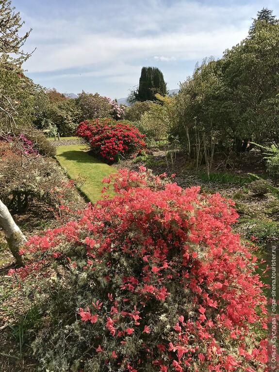 Не менее роскошный, чем сам замок, цветущий парк Инверари