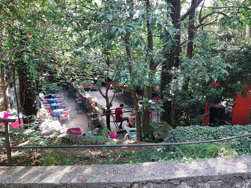 Из парка по каменным ступенькам можно спуститься в кафе.