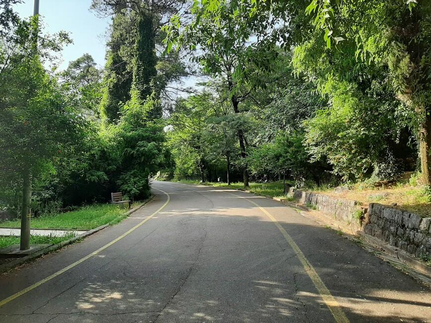 Парк шума (лесной парк) на холме  Горица, давшем название городу, расположенному под ним (Подгорица).