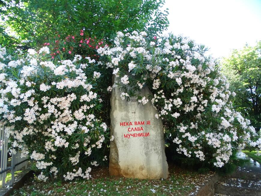 Власти современной Черногории, которые привели страну в НАТО, пытаются изменить сознание черногорцев. Но как быть с исторической памятью? Как забыть, сколько раз бомбили Подгорицу, уничтожая её вместе с жителями: австрийцы в 1914 году, итальянцы в 1941 году,  а также союзники 23 сентября 1943-го и 5 мая 1944 года.  В майской бомбежке на город было сброшено 600 авиабомб весом 400 т. Погибли 600 человек,  а потом из разрушенных домов были вытащены тела еще 314 жертв.