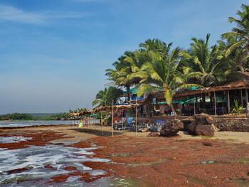 В Гоа будут активнее развивать медицинский и экскурсионный туризм