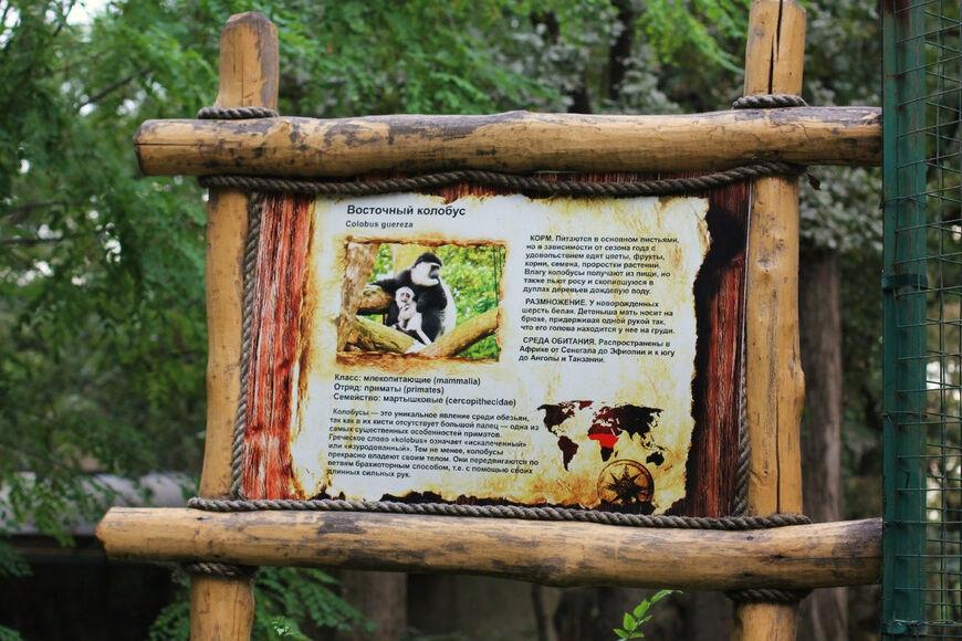 Место для отдыха душой в Краснодаре – Ботанический сад : Отзыв