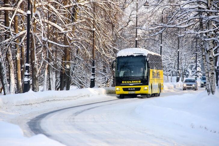 Автобус Москва — Рига
