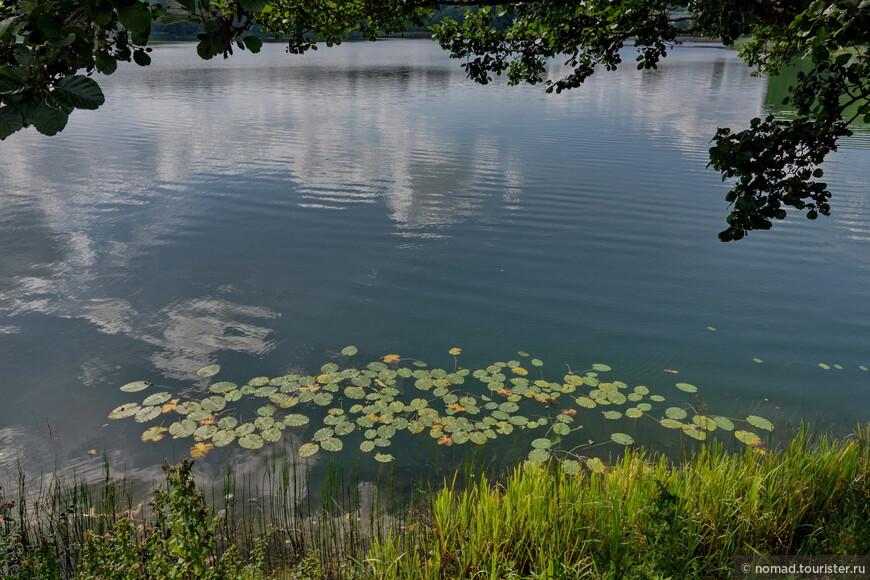 Обратная дорога само-собой вела вдоль озера..
