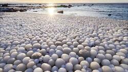 В Финляндии обнаружили редкие «ледяные яйца»