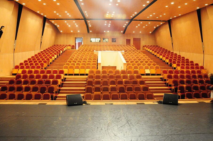 Большой зал театра Рюминой