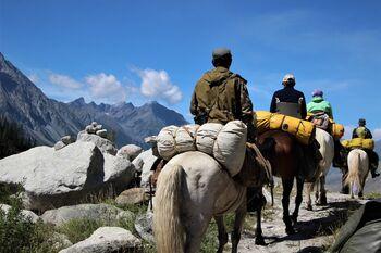 Горный маршрут на лошадях
