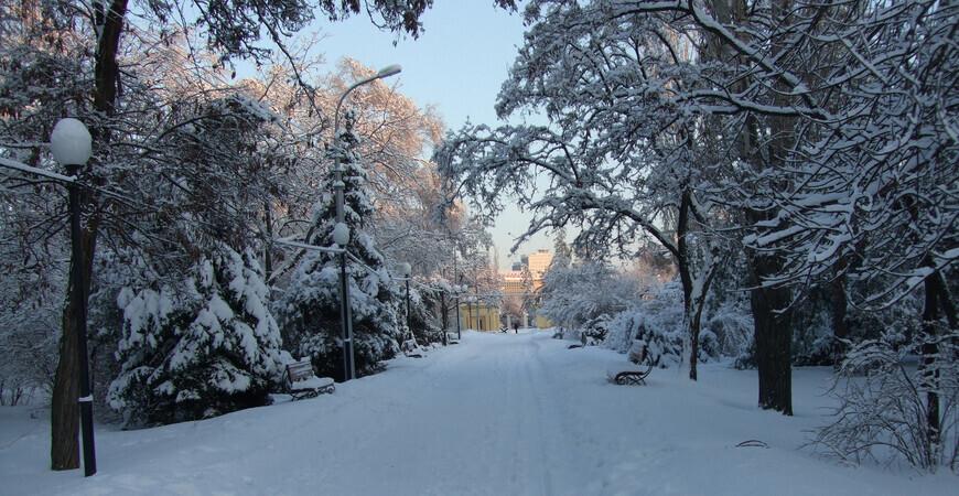 Комсомольский сад<br/> в Волгограде
