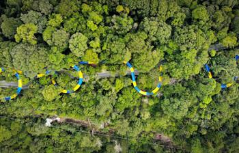 В Малайзии открылась самая длинная в мире водная горка