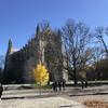 Поездка по столицам США: Принстон — Филадельфия — Вашингтон, 2 дня. Принстонский университет