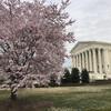 Полная обзорная экскурсия по Вашингтону, 6 часов. Здание Верховного суда