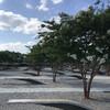 Полная обзорная экскурсия по Вашингтону, 6 часов. Мемориал 9/11 в Пентагоне