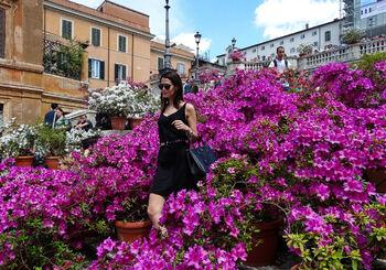 Испанская лестница в Риме в мае