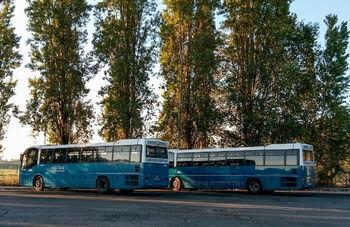 Автобусы компании Cotral