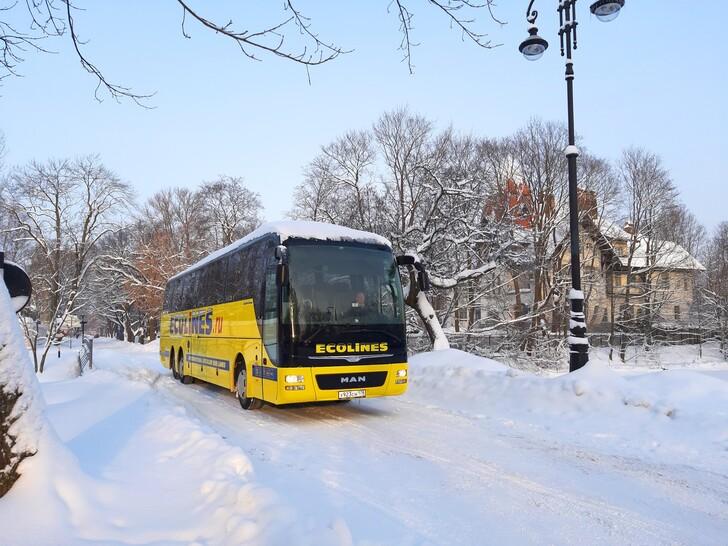 Автобус Витебск — Санкт-Петербург