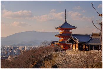 Японская авиакомпания полетит из Токио в Москву