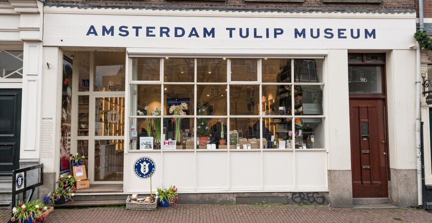 Музей тюльпанов<br/> в Амстердаме