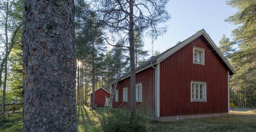Музей леса Лапландии