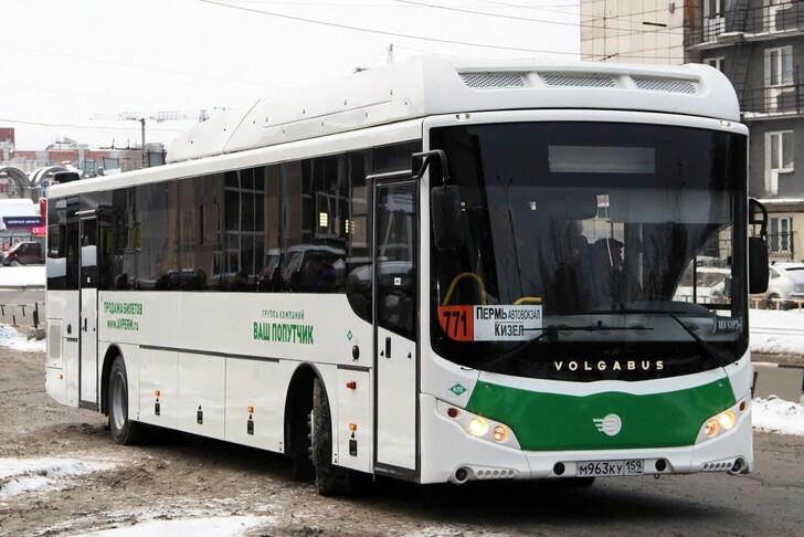 Автобус Пермь — Губаха