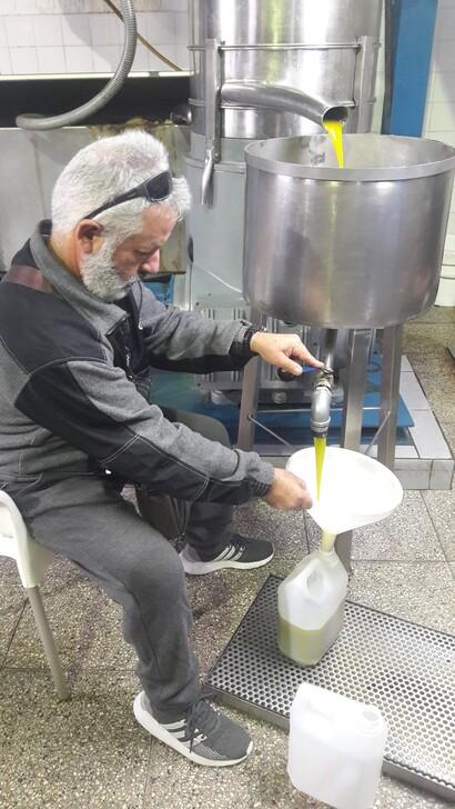 🌿 Оливковое масло на Кипре. Где Купить 🌿