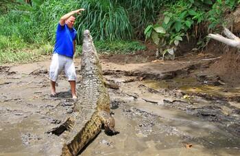 В Коста-Рике туристов просят не делать селфи с дикими животными