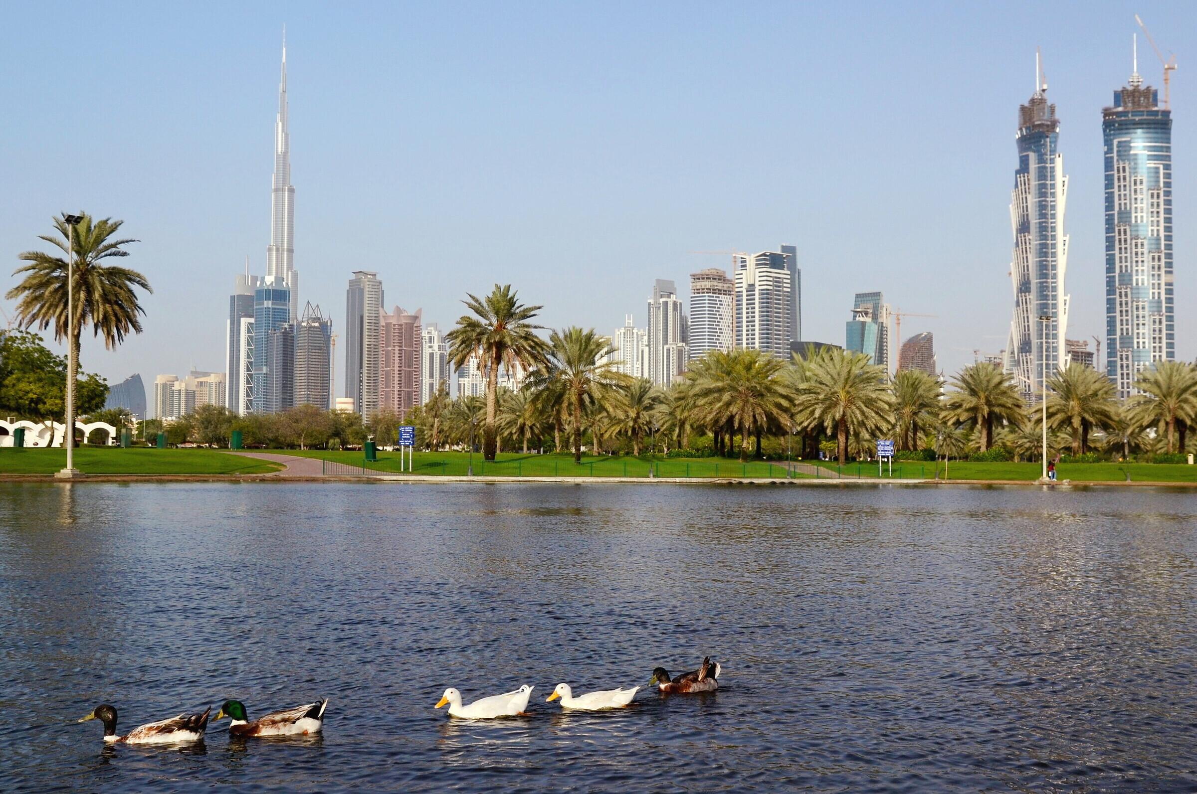 Дубай парк сафа когда откроют границы россии на выезд