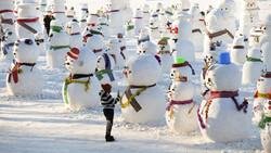 На набережной Тюмени установят 2020 снеговиков