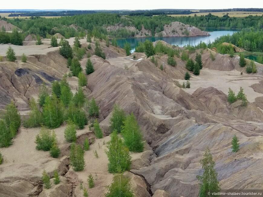 Инопланетный пейзаж сочетает в себе и озера невероятных оттенков, и изрезанную трещинами пустыню, и скалистые горы, и деревья, уходящие корнями вглубь глиняного панциря.