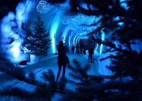 Рождественская сказка Загреба