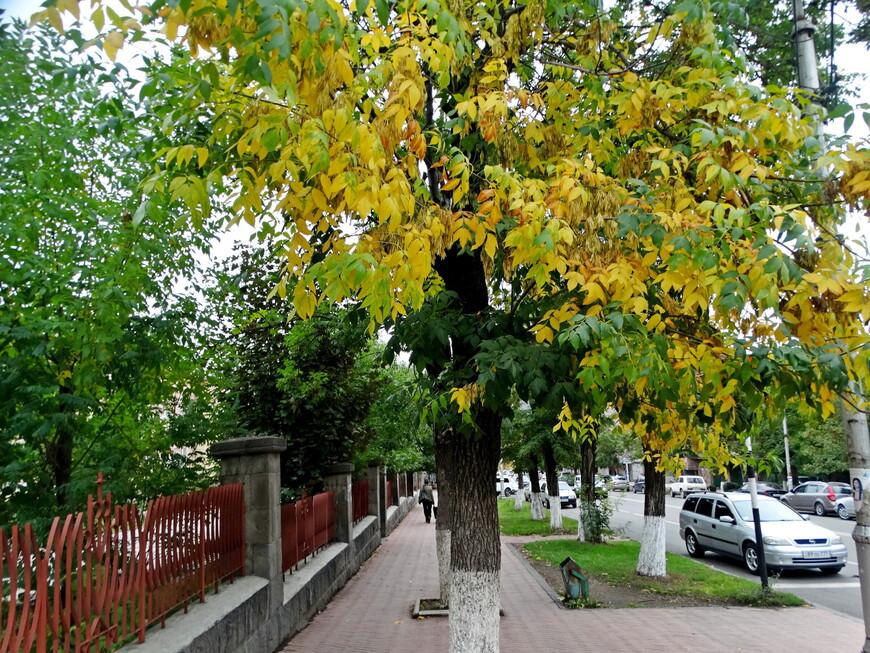 Осень в Ванадзоре.