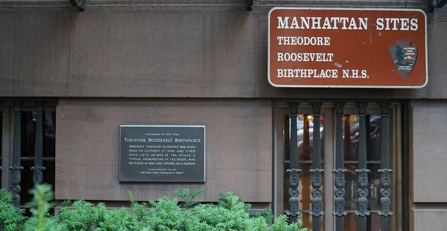 Место рождения Рузвельта<br/> в Нью-Йорке