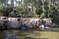Парк «Пальмераль» (Parque El Palmeral)