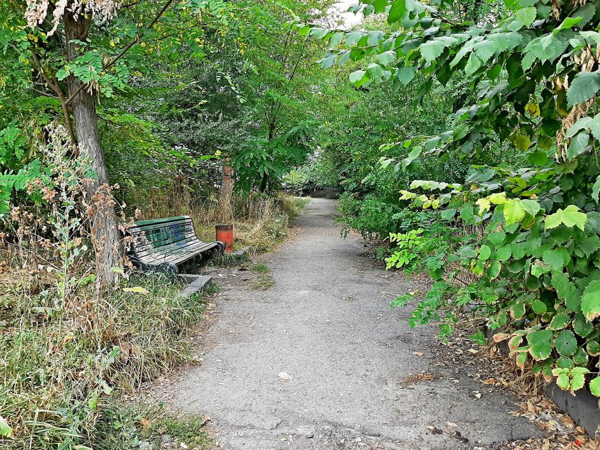 Прошли по таинственным дорожкам старого парка.