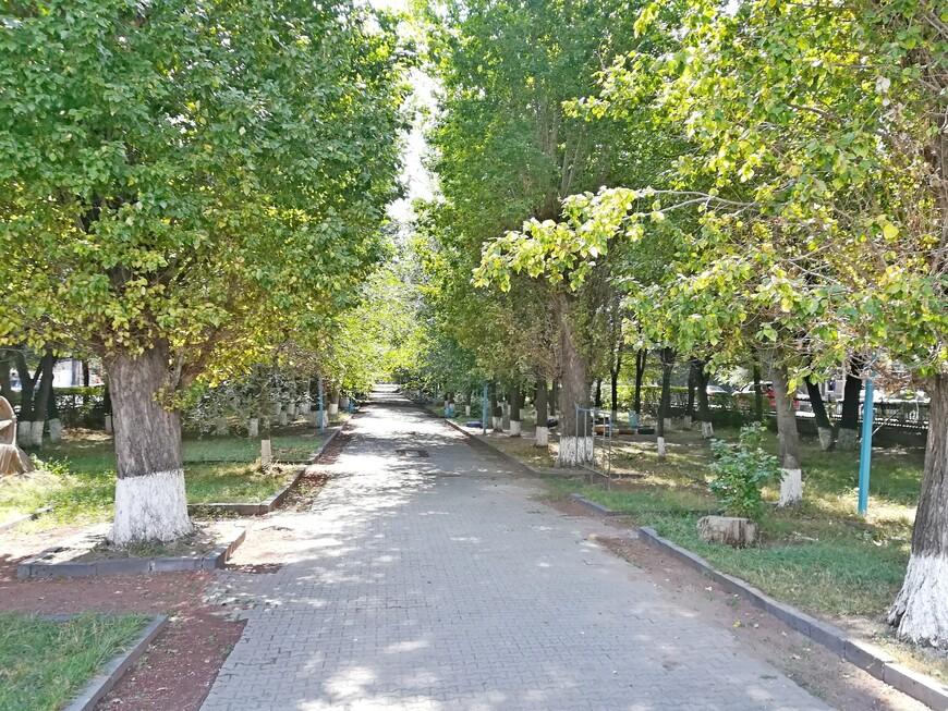 В парке Багратуняц.