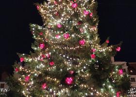 И снова рождественский Таллин