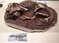 Некоторые экспонаты помогают представить работу палеонтолога