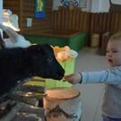 Контактный зоопарк «Простоквашино»