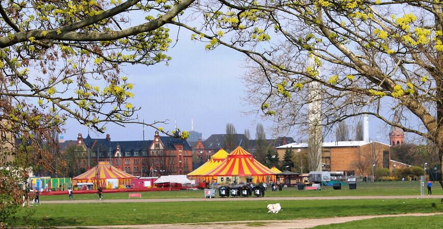 Цирк Cabuwazi